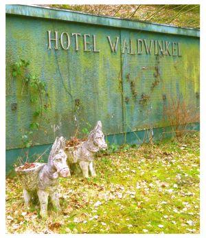 Hotel Waldwinkel