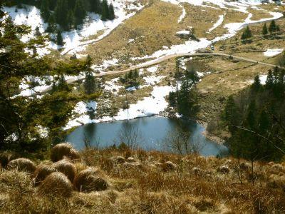 Bergseewanderung: Am Col du Lac_2