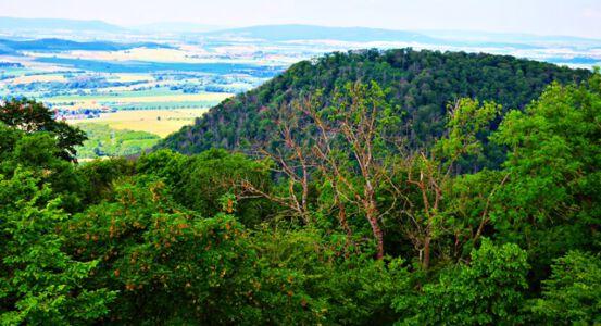 Blick vom Tafelbergturm