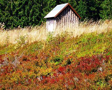 Schweden oder Harz