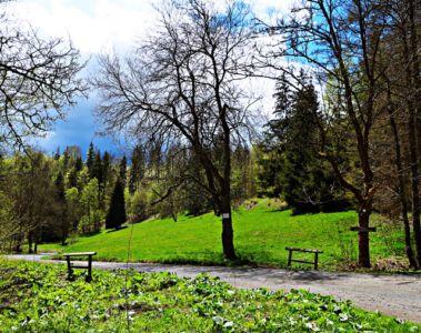 Wolfsbachtal