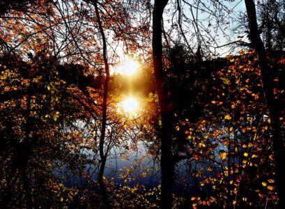Sonnenuntergang an der Saale