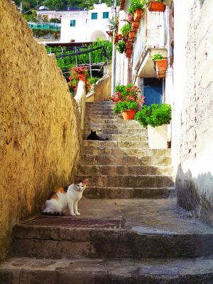 Bomerano: Wanderung von SanLazzaro nach Amalfi