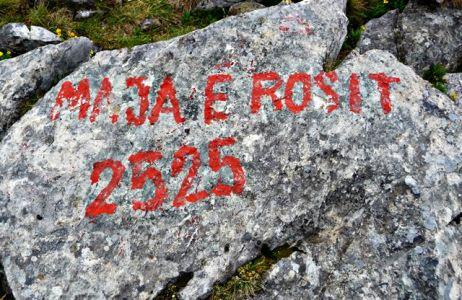 Auf den Berg Rosi