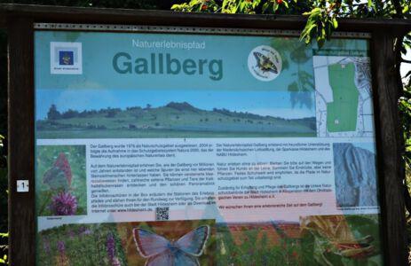 Naturschutzgebiet Gallberg