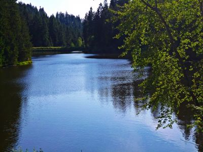 Grumbacher Teich