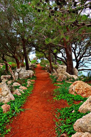 Wanderweg um Valldemossa