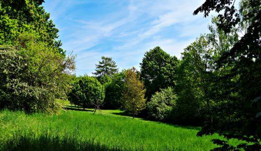 Park in Gebardshagen