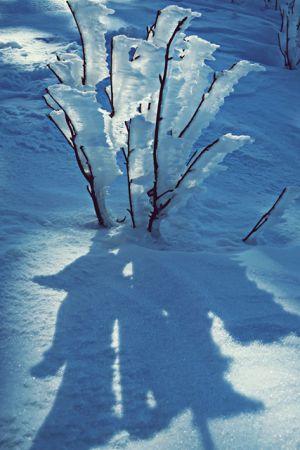 Winterwonderland auf dem Wurmberg