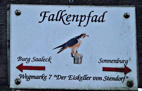 Der Falkenpfad