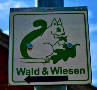 Radtour Wald & Wiesen