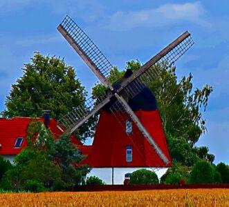 Das Wahrzeichen von Meine: die Mühle