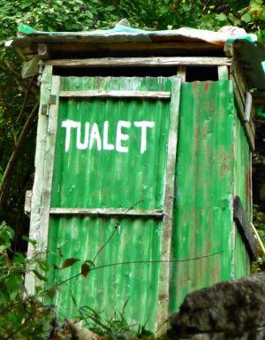 Wilde Toilette