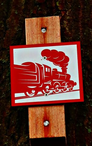 Die Harzer Holzdampflok