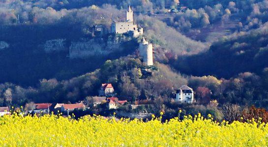 Blick auf zwei Burgen