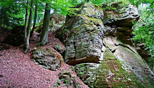 Bodensteiner Klippen
