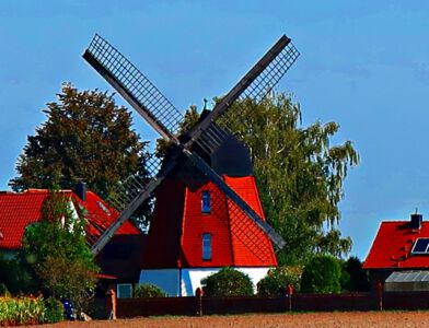 Windmühle in Meine