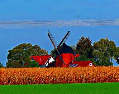 Windmühle Meine