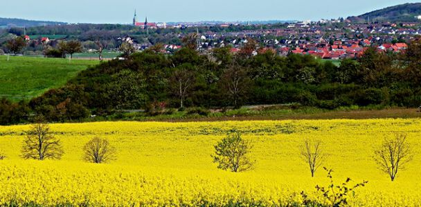 Blick auf Bad Salzdetfurth