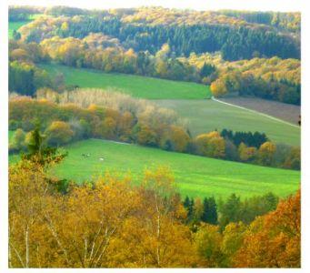 Das Felderbachtal in der Elfringhauser Schweiz