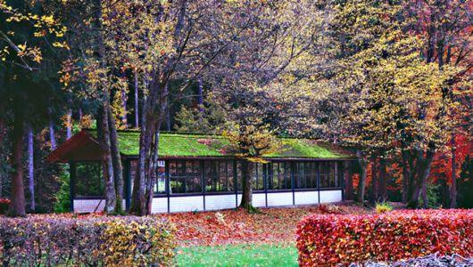 Kurpark Wildemann