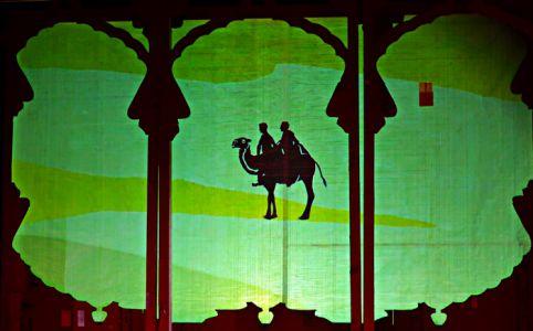 Markus&Markus reisen auf Kamelen