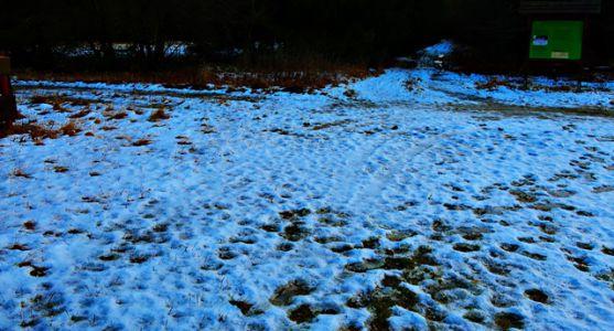 3. Advent im Schnee