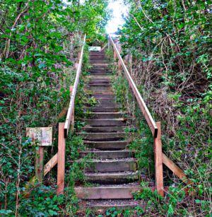 Treppe zum Heerter See