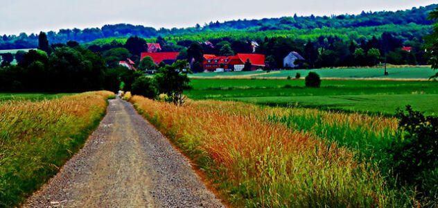 Radweg nach Hemkenrode