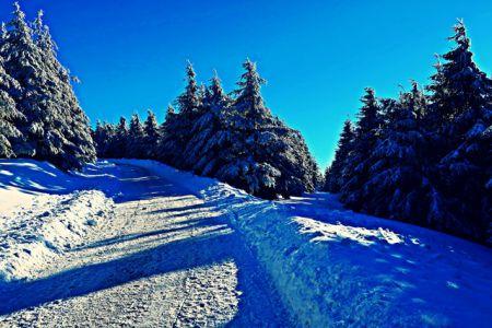 Aufstieg zum Wurmberg