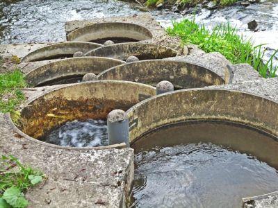 Fischschleuse bei Silberhütte