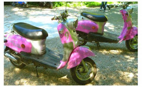Pinke Mofas
