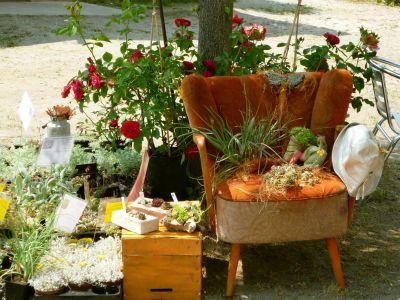 Blumenensemble_Salderatzen
