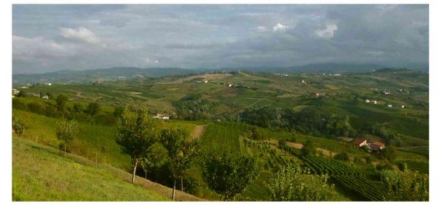 Casteggio Hinterland