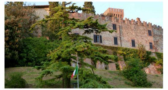 Castello Cigognola
