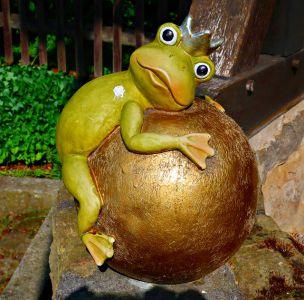 Frosch Harbke