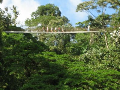 Costa Rica: Hanging Bridges Arenal