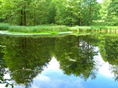 Drei-Täler-Tour: Hasselbach