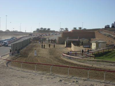Al Wathba Camel Race Track