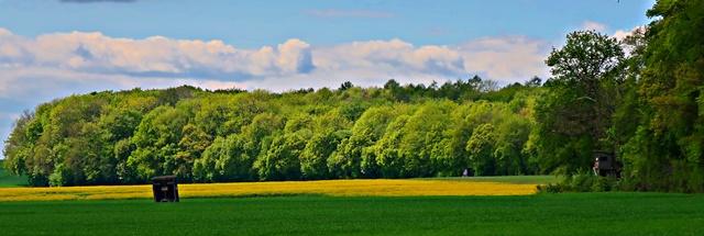 Landschaft am Watzumer Häuschen