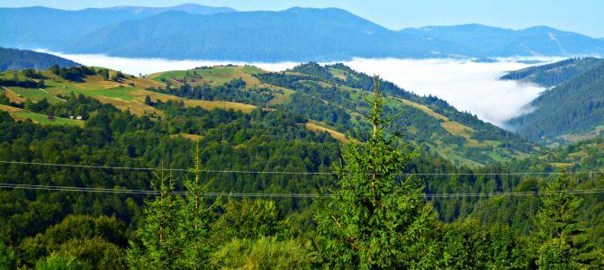 Nebel über dem Tal