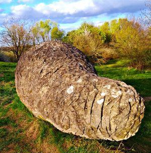 Der Fels in der Brandung