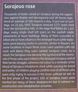 Die Rosen von Sarajevo