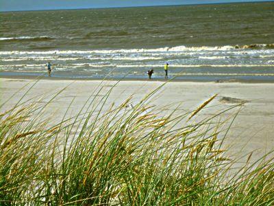 Tag2_Strandleben Nes6