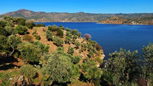 Bafa Gölü - Bafasee