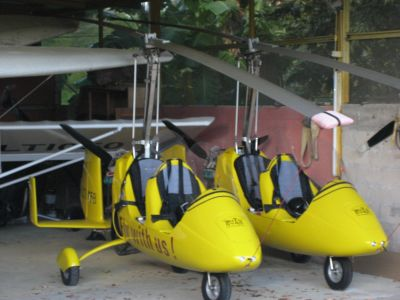 Costa Rica: Flying Crocodile