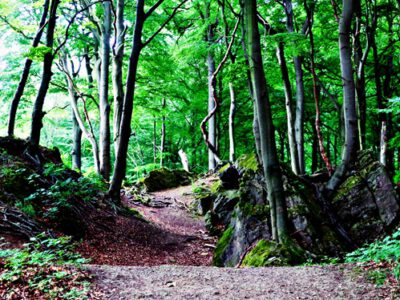 The Ith ridgeway: Between bug luck and poet romanticism